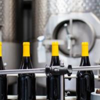 bottling line bottles on a conveyor belt