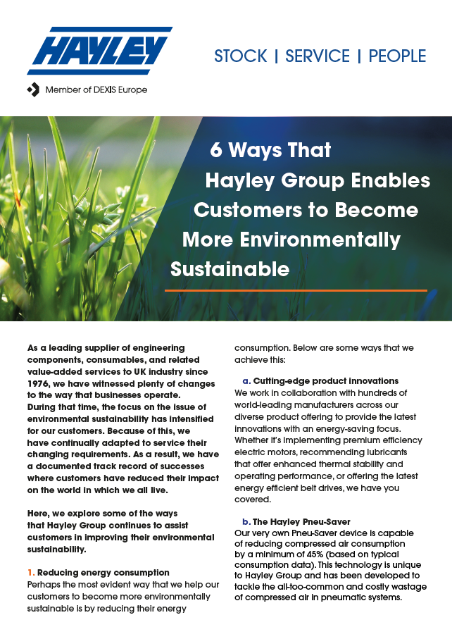 6 Ways That Hayley Group Enables Customers To Become More Environmentally Sustainable